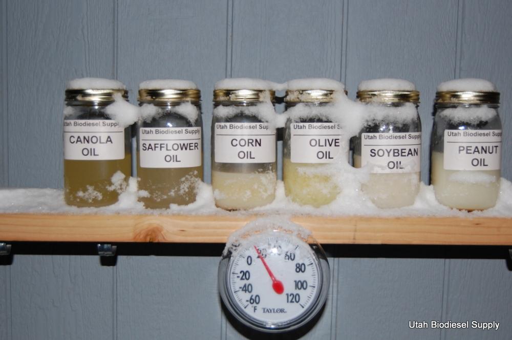 Gelling Biodiesel