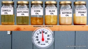 Biodiesel Gelling