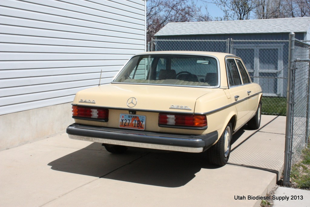 Mercedes 240D Rear