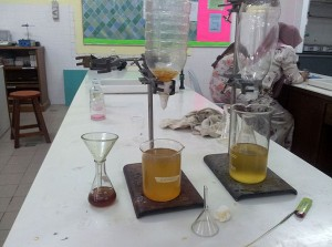 Finished Biodiesel