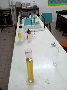 Biodiesel Sample