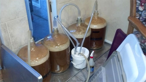 Jack Fermenting Carboys