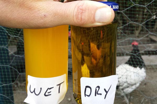 biodiesel3chickendrytest