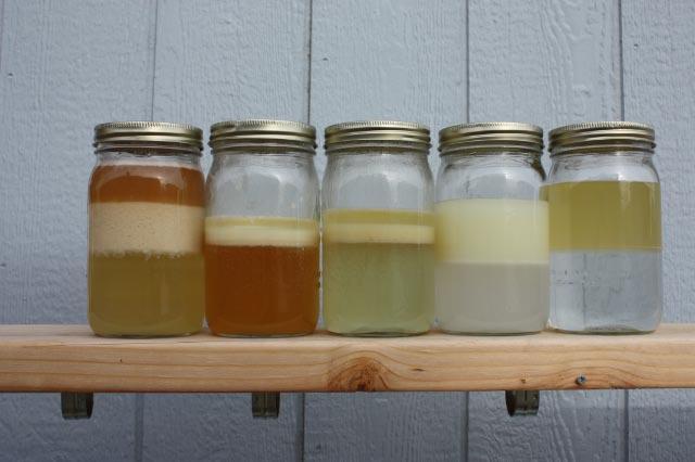 Understanding Emulsions